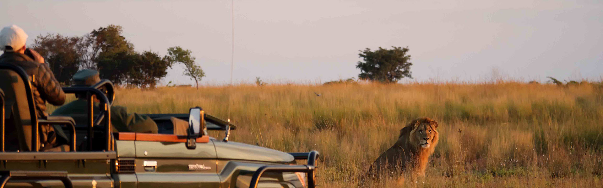 South Luangwa & Liuwa Plains en lodges d'exception | Sous l'Acacia