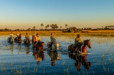 Okavango, le must du safari à cheval