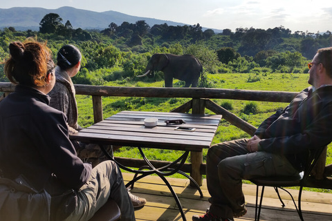 Ngorongoro Rhino Lodge