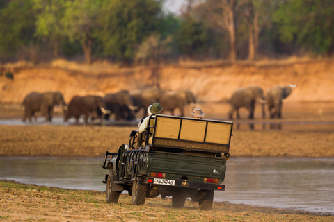 Livingstone - South Luangwa National Park