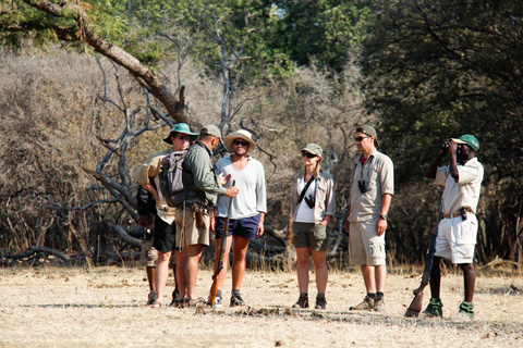 Harare - Mana Pools - Camp Zambezi (A pied)